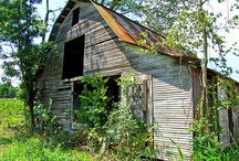 Old Barns / by Brenda Rushing