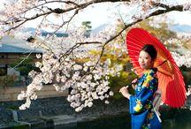 Japan / Pachnąca kwitnącą wiśnią, uduchowiona, przywiązana do tradycji, a jednocześnie hipernowoczesna. Japonia to nie tylko tajemnicze gejsze, kolorowe orgiami i orientalne przysmaki, to inna rzeczywistość, której trzeba zakosztować.