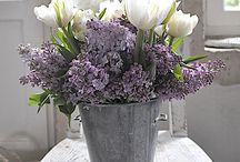 Bouquets / Fleurs