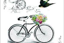 transfer - bike