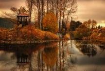 Landscape/nature photography