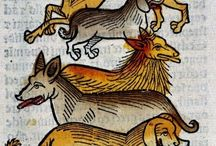 Medieval Dogs... / being dogs in medieval times...