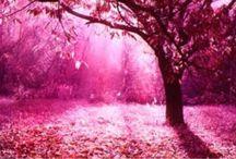 Pretty & Pink / by Jazmine Moralez