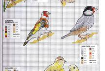 Punto croce - Uccelli