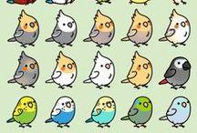 papouši