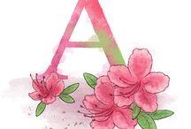 lettere fiori