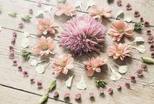 flower circle mandalas