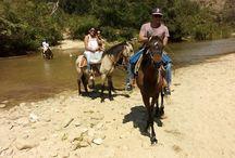 Aguas Termales - Manialtepec Oaxaca