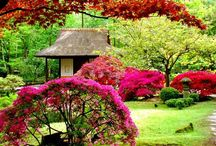 I would a garden like these