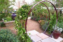 My Garden Aspirations