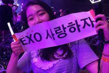 Exo Concert/ EXO-L