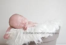 photoshoot: newborn  / by angie weldon
