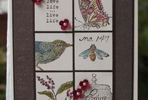 Nature Walk cards / by Alice Sebring