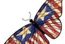 America ! ! ! / by Kathy Humphrey