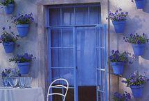 Janelas e portas floridas