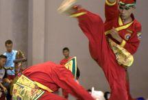 Pencak silat: More than just traditional martial art / http://www.jakpost.travel/news/pencak-silat-more-than-just-traditional-martial-art-P9i6LIF1WAKxnva7.html