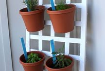 Apartment Gardening / Spring is in full swing and summer is right around the corner!  Here are some ideas on how to add some life and color to your backyard or patio with cool gadgets and DIY projects!