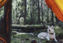 nature, landscape, adventure