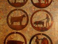 Show cattle  / by Megan Woodson