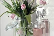 spring decor / by Carrie Sullivan