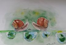 watercolours / акварель