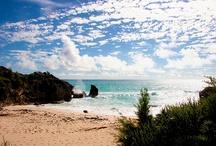 Bermuda Favorites