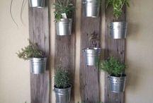 backyardenvy | Gardening