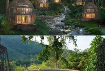Treehouse vibes  / Collection of quirky hotels and homes that have a treehouse theme