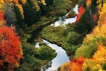 2. Nature//El color del Otoño