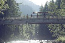 Oregon Dreaming...