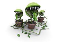 хищные растения-боты