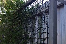 Vertical gardening / Concept