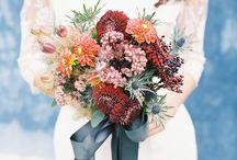Flowers of the Season Autumn