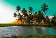 """""""travel kerala"""" / Let's start the journey with God's own Country."""