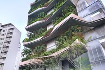 highrise green
