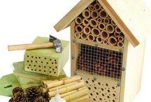 Tuin; Biodiversiteit en duurzaamheid  / insecten, vlinders, dieren, grondsoorten, bomen, planten, recycling