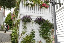 Garden stavanger norway