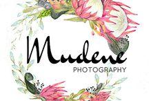 my website designs