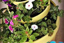 Garden - Inspirations / by Amanda Ohl