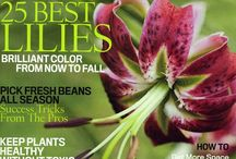 Books and Magazines about Gardening / Favorite books and magazines about fruit trees and gardening.