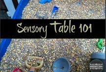 Sensory Tables / Bring the fun into academic learning by including sensory play!