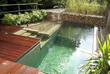 Natural Pools / Examples of naturally cleaned and maintained pools