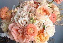 coral & peach
