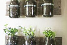 applique bocaux plantes