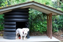 Dog House Plans / Hopefully to find a good one plus some interesting but not practical ideas... / by Linda Hindman Wharton