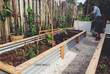 Greenhouses & raised flower beds