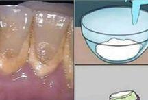 Dentes - Boca