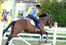 Equestrian Moments / Source: http://equestrian-moments.tumblr.com / by Providence Hill Farm