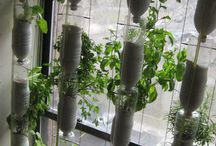 Vertical gardens / beds
