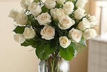 Flowers / by Teresa Roll